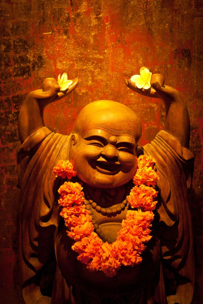 смешные буддийские картинки квартиры